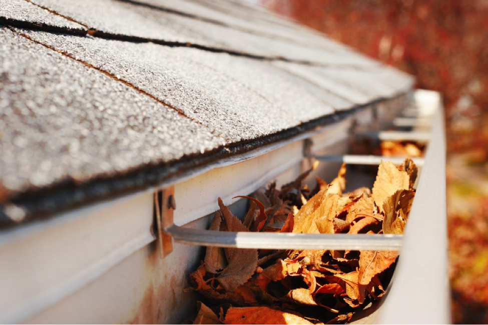 Why Professional Gutter Cleanup Matters