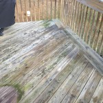 Deck Restoration Before